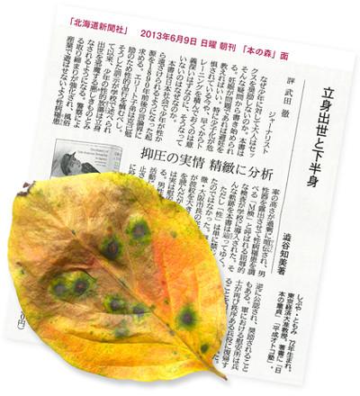 Hidenhokaidoshimbun201369001_3